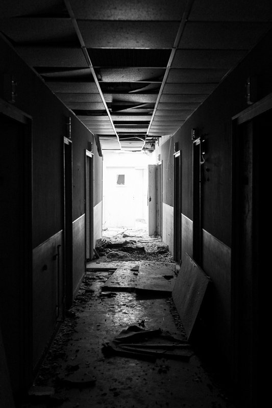 015-Friche-noire-D71-9029.jpg